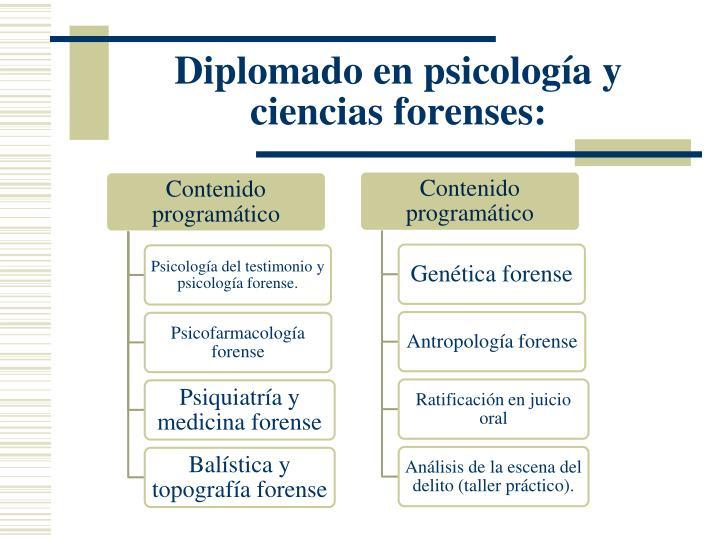 Diplomado en psicología y ciencias forenses: