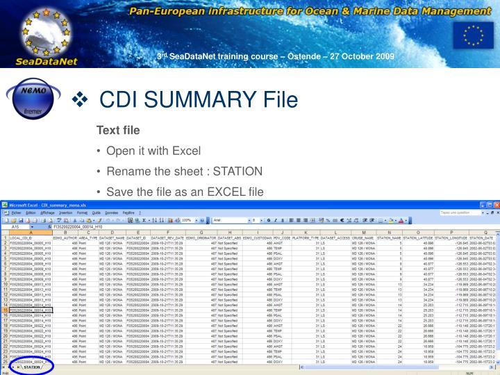 CDI SUMMARY File