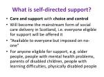 what is self directed support