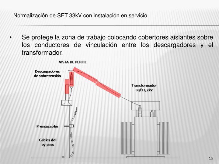 Se protege la zona de trabajo colocando cobertores aislantes sobre los conductores de vinculación entre los descargadores y el transformador.
