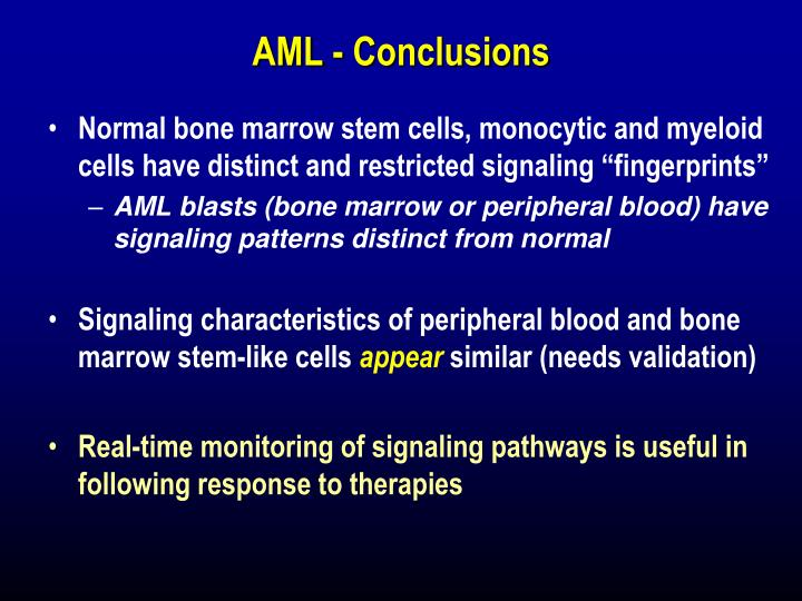 AML - Conclusions