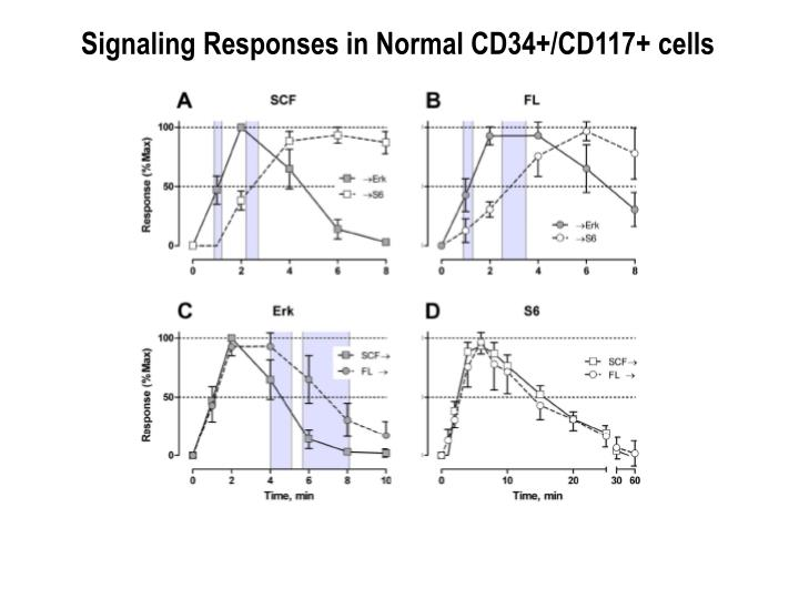 Signaling Responses in Normal CD34+/CD117+ cells