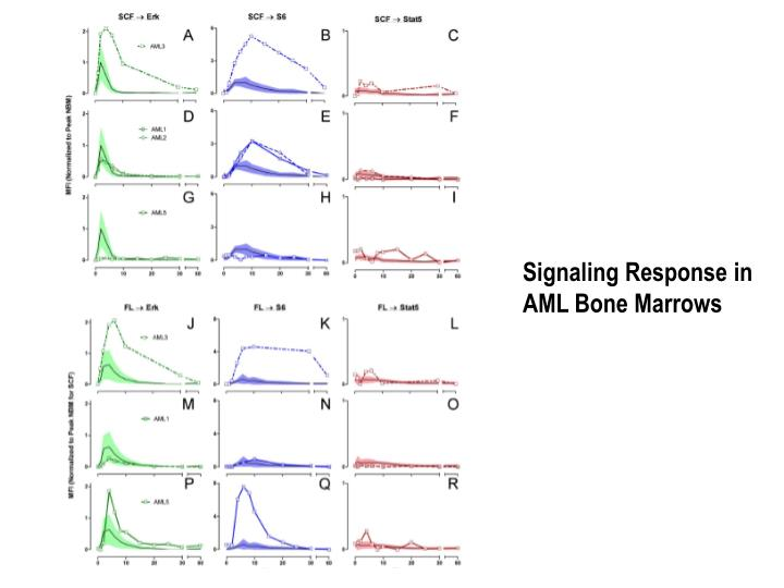 Signaling Response in