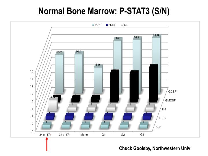 Normal Bone Marrow: P-STAT3 (S/N)