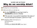 where are we from why do we worship allah