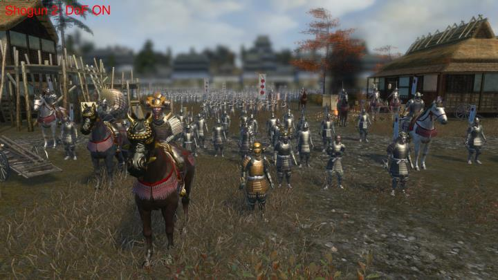 Shogun 2: DoF ON