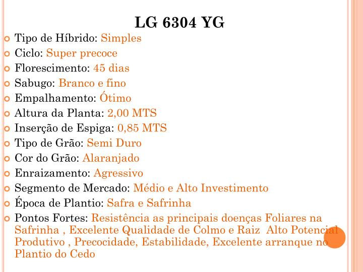LG 6304 YG