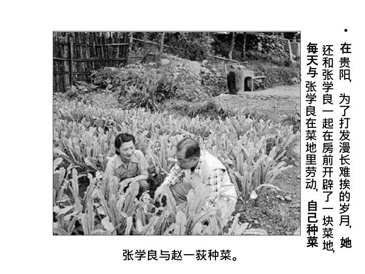 在贵阳,为了打发漫长难挨的岁月,她还和张学良一起在房前开辟了一块菜地,每天与张学良在菜地里劳动,自己种菜自己吃。
