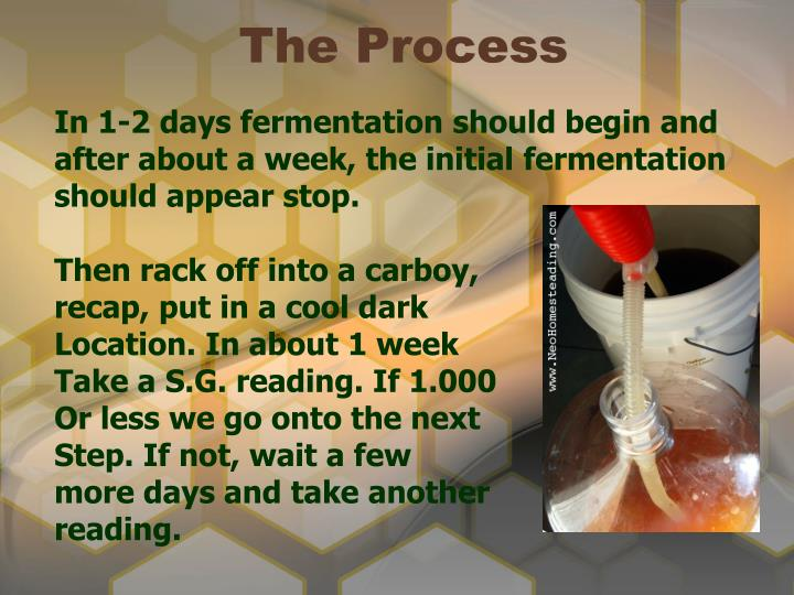 In 1-2 days fermentation should begin and