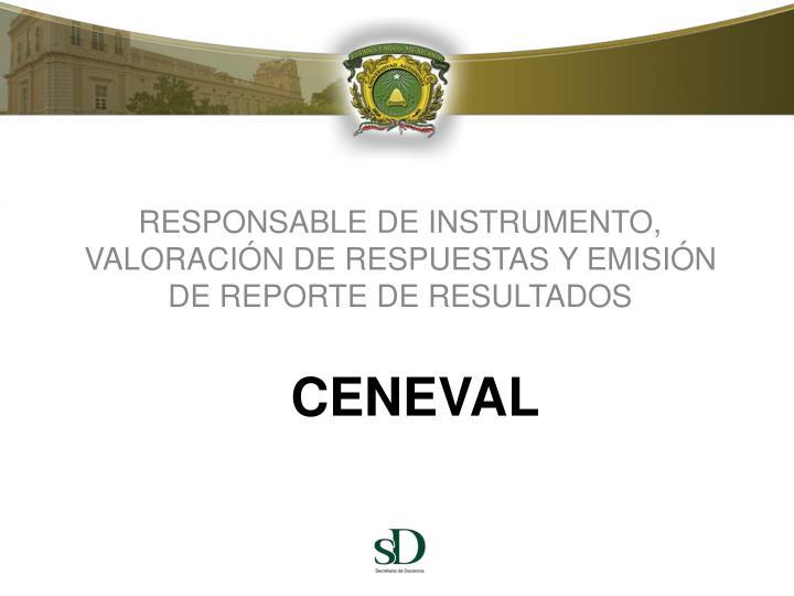 RESPONSABLE DE INSTRUMENTO, VALORACIÓN DE RESPUESTAS Y EMISIÓN DE REPORTE DE RESULTADOS