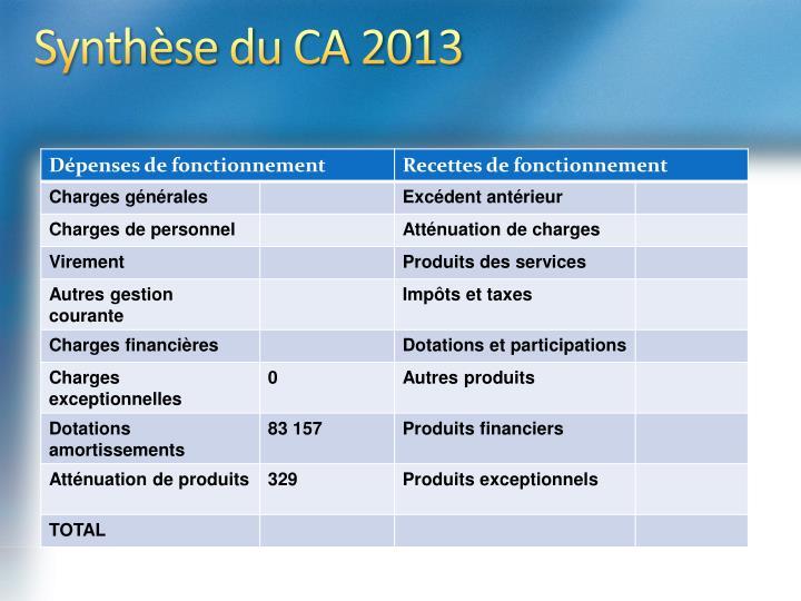 Synthèse du CA 2013
