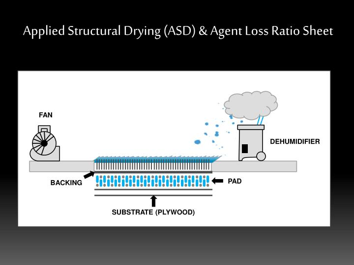 Applied structural drying asd agent loss ratio sheet1