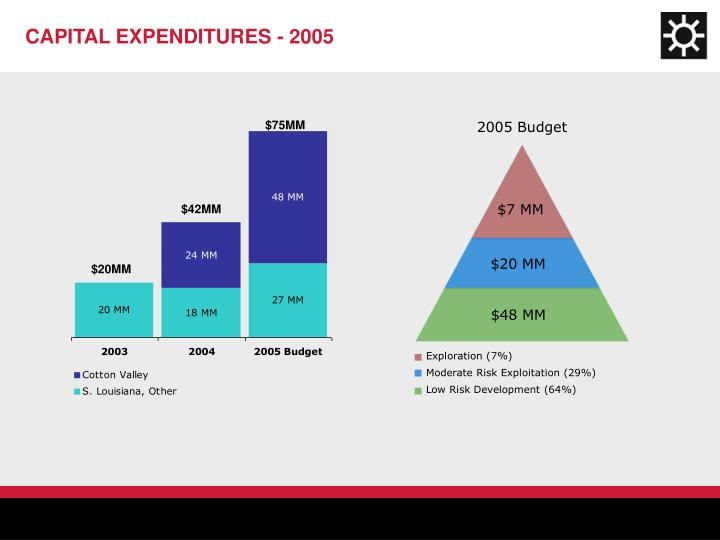 CAPITAL EXPENDITURES - 2005