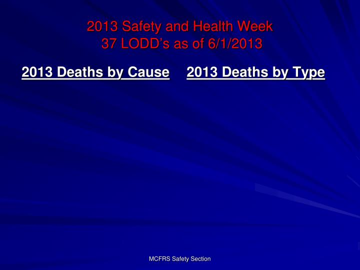 2013 Deaths by Cause