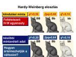 hardy weinberg eloszl s