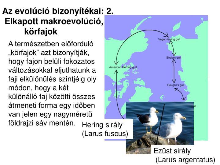 Az evolúció bizonyítékai: 2