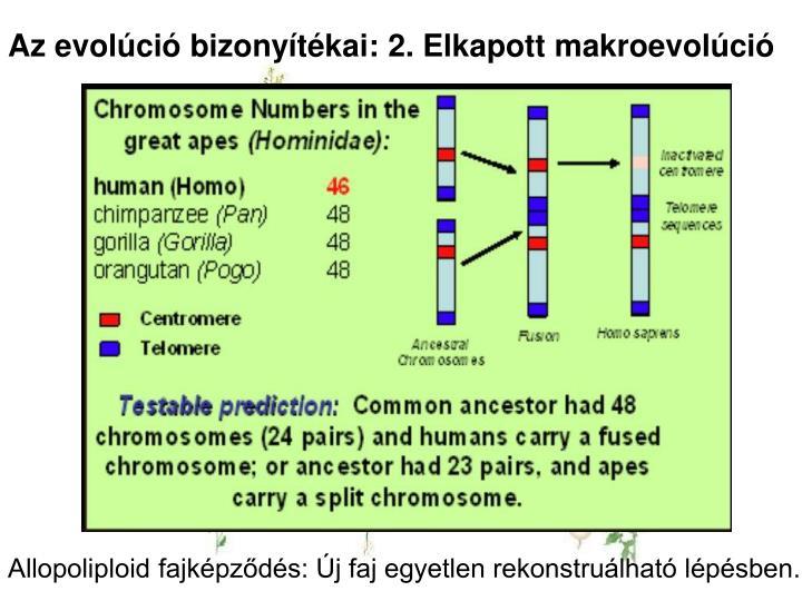 Az evolúció bizonyítékai: 2. Elkapott