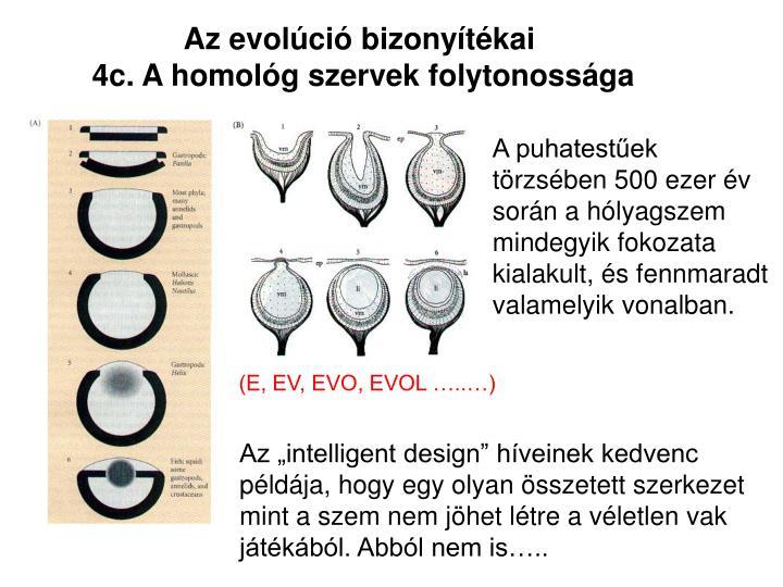 Az evolci bizonytkai