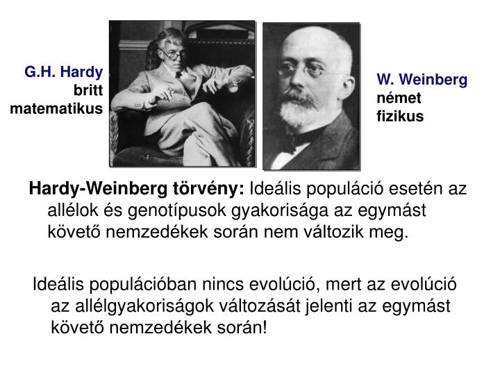 Ideális populációban nincs evolúció, mert az evolúció az allélgyakoriságok változását jelenti az egymást követő nemzedékek során!