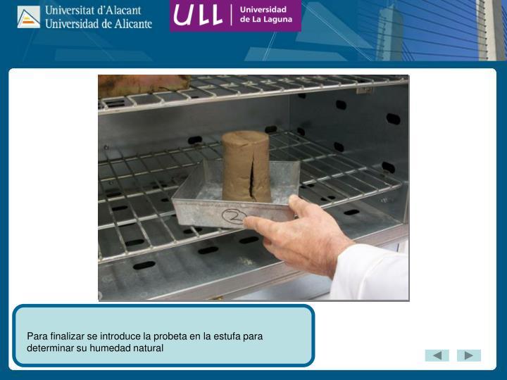 Para finalizar se introduce la probeta en la estufa para determinar su humedad natural