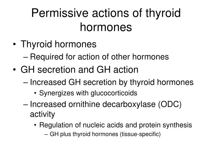Permissive actions of thyroid hormones