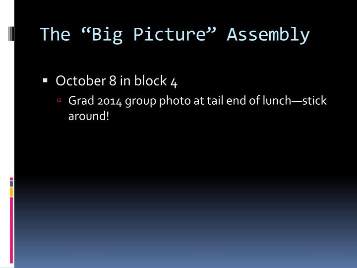 "The ""Big Picture"" Assembly"