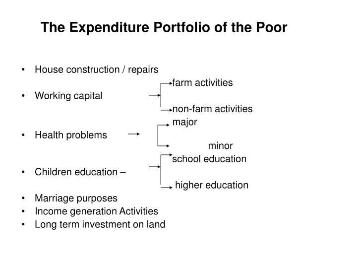 The Expenditure Portfolio of the Poor