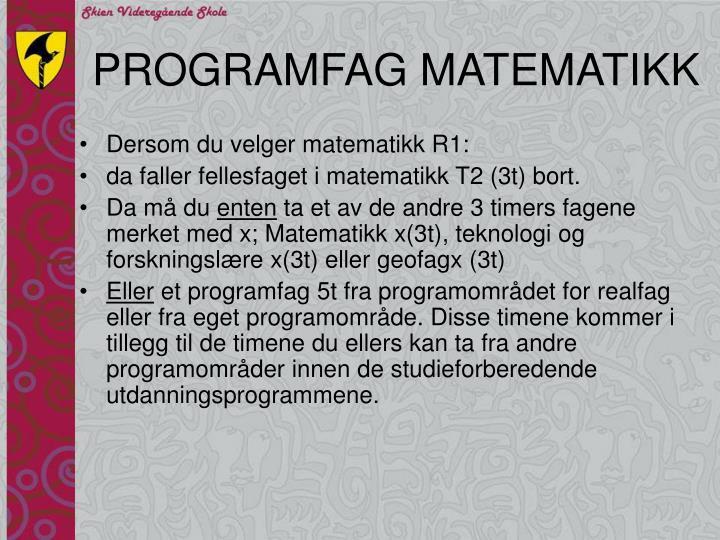 PROGRAMFAG MATEMATIKK