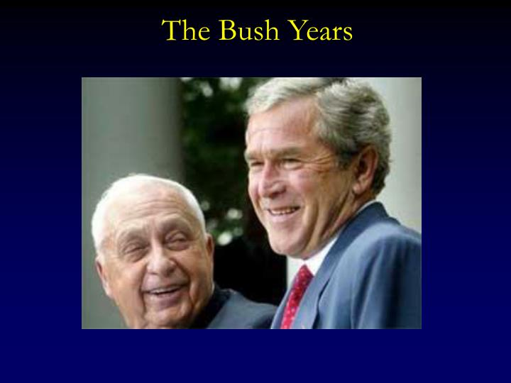 The Bush Years