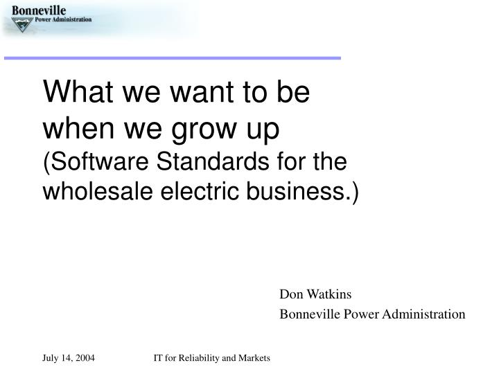 What we want to be when we grow up software standards for the wholesale electric business