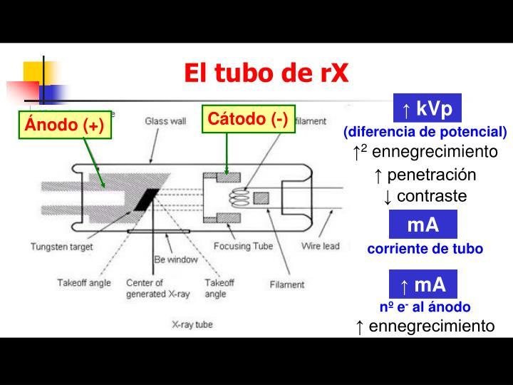 El tubo de rX
