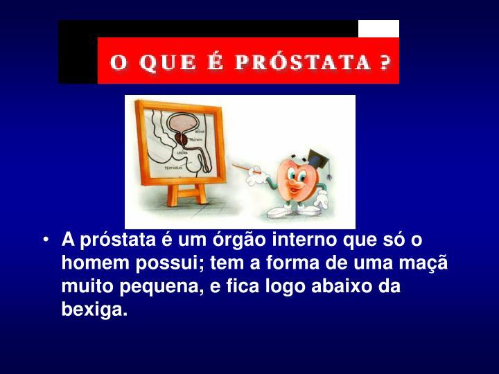 A próstata é um órgão interno que só o homem possui; tem a forma de uma maçã muito pequena, e fica logo abaixo da bexiga.