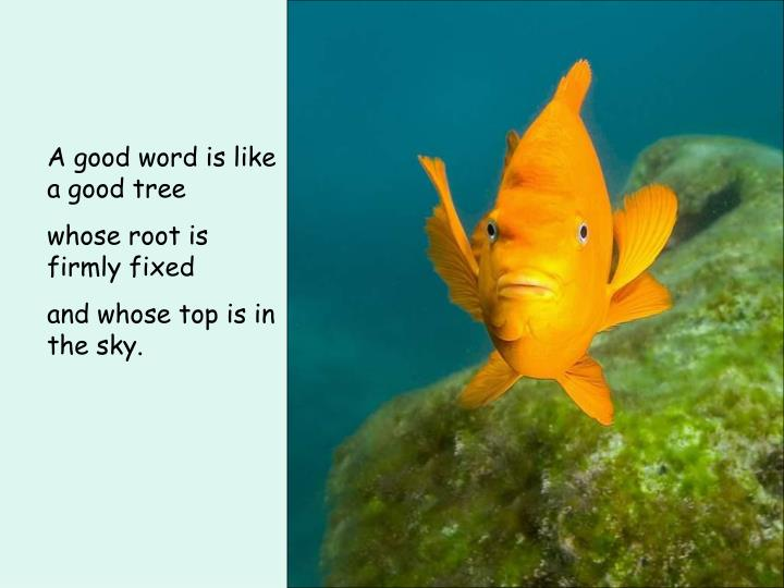 A good word is like a good tree