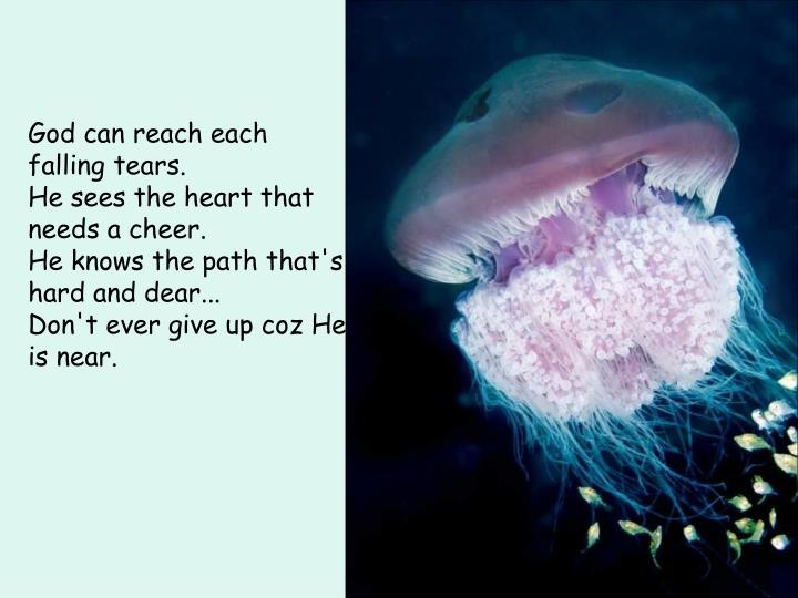 God can reach each falling tears.