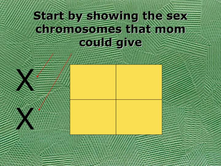 Start by showing the sex chromosomes that mom could give