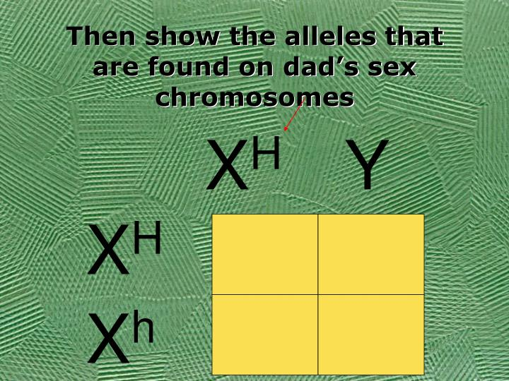Then show the alleles that are found on dad's sex chromosomes