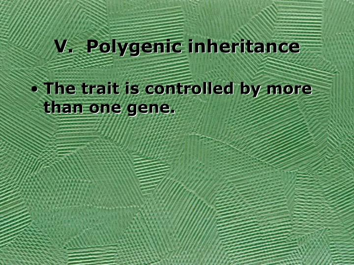 V.  Polygenic inheritance