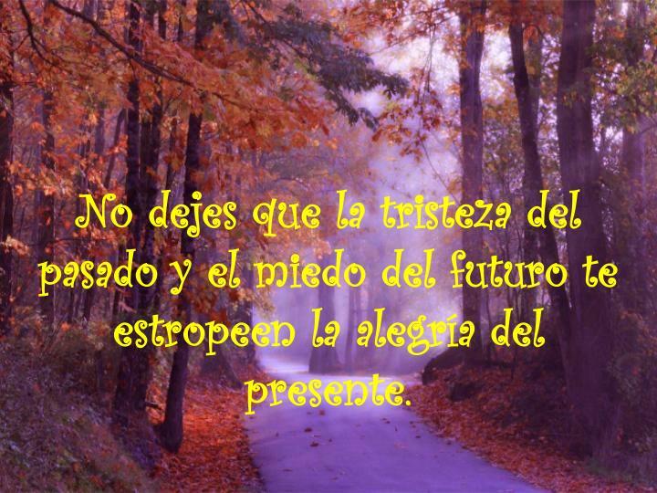 No dejes que la tristeza del pasado y el miedo del futuro te estropeen la alegría del presente.