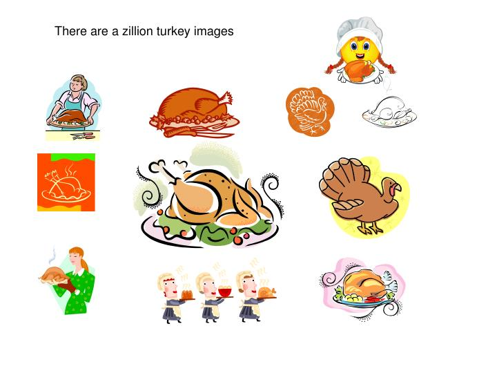 There are a zillion turkey images