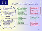 eccp scope and organisation