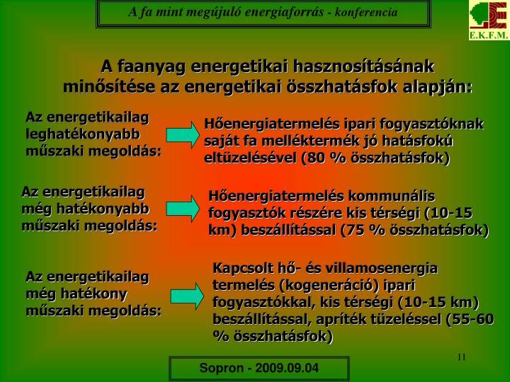 A fa mint megújuló energiaforrás