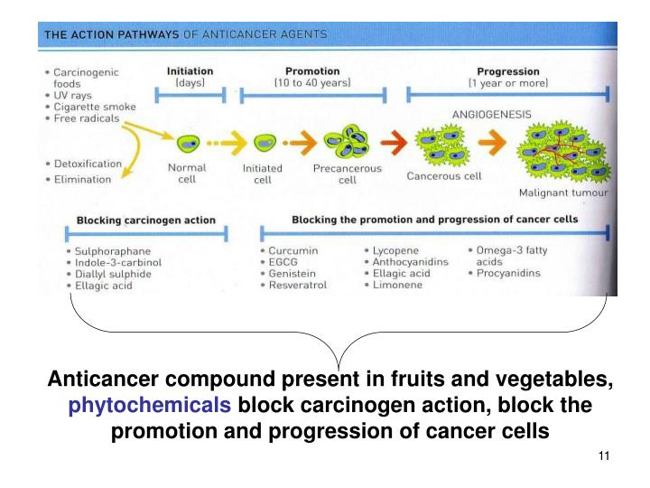Anticancer compound present in fruits and vegetables,