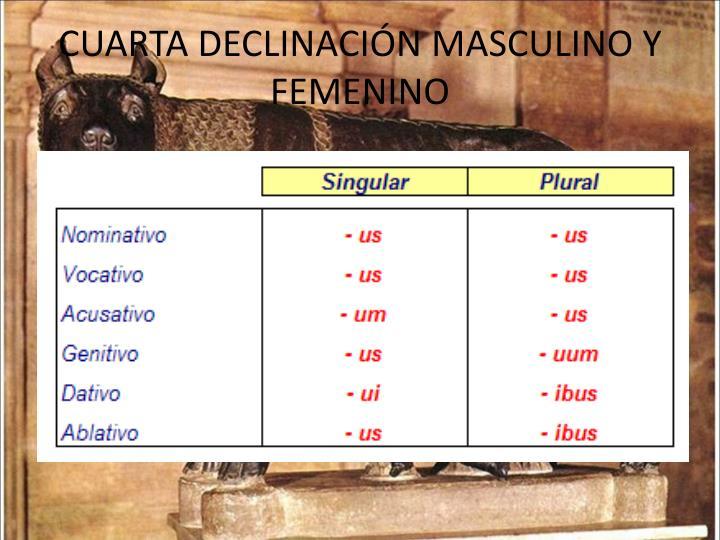 CUARTA DECLINACIÓN MASCULINO Y FEMENINO