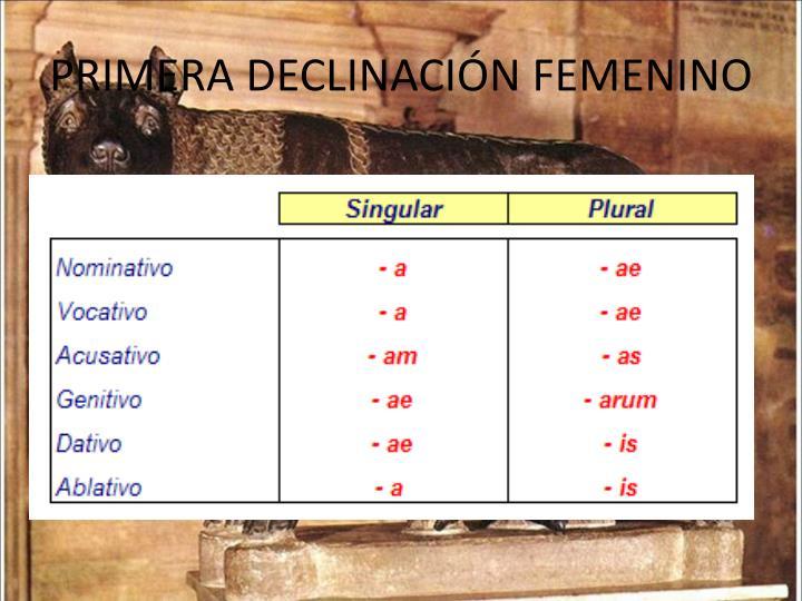 PRIMERA DECLINACIÓN FEMENINO