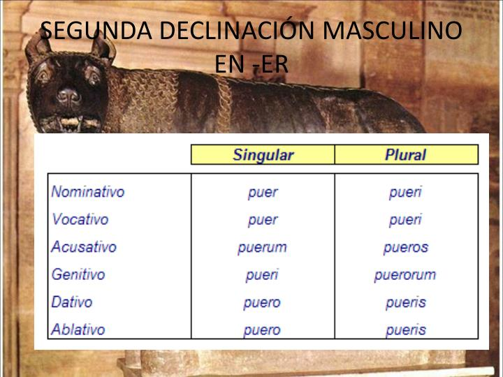 SEGUNDA DECLINACIÓN MASCULINO EN -ER