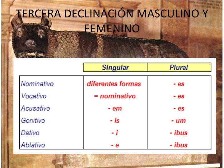 TERCERA DECLINACIÓN MASCULINO Y FEMENINO