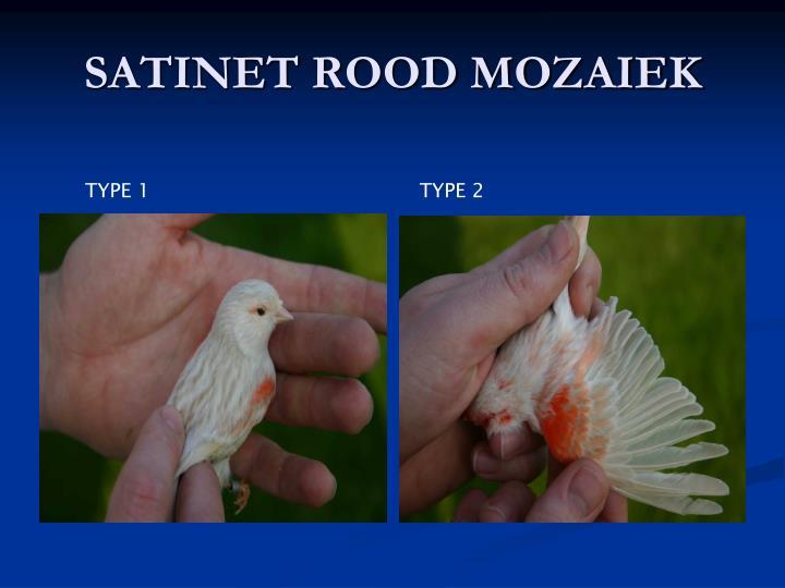SATINET ROOD MOZAIEK