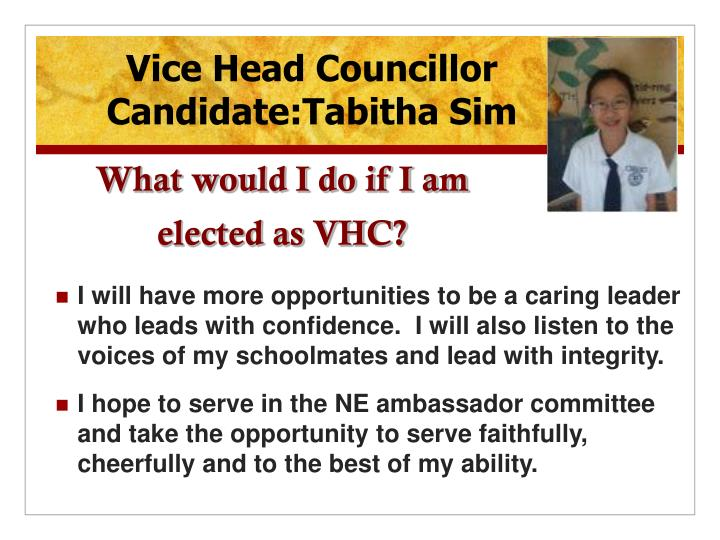 What would I do if I am  elected as VHC?