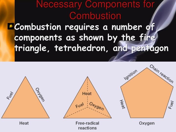 Necessary Components for Combustion