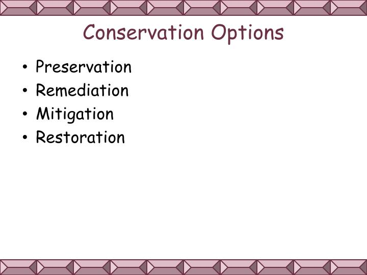 Conservation Options